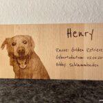 Steckbrief für ein Haustier, Wunschgravur mit Bild